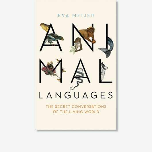 Animal Languages by Eva Meijer is out on 14 November 2019 (£14.99, John Murray).