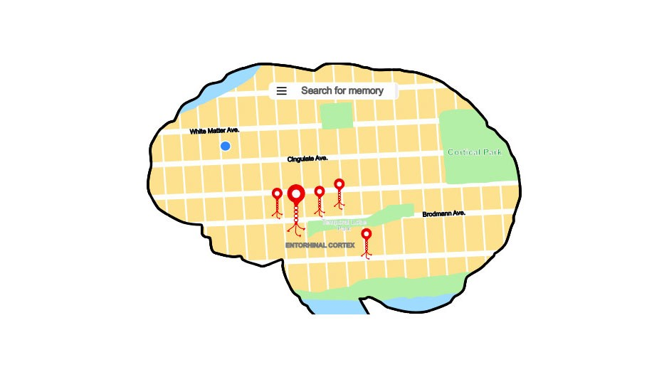 Discovered: the brain's map pins