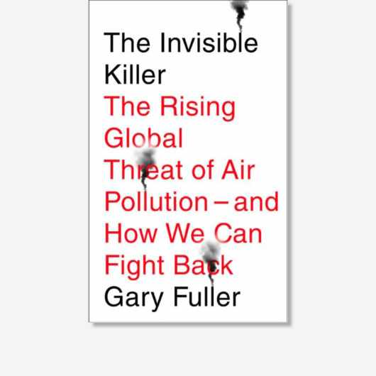 The Invisible Killer: The Rising Global Threat Of Air Pollution — And How We Can Fight Back by Gary Fuller is available now (£12.99 on Hive, Melville House)