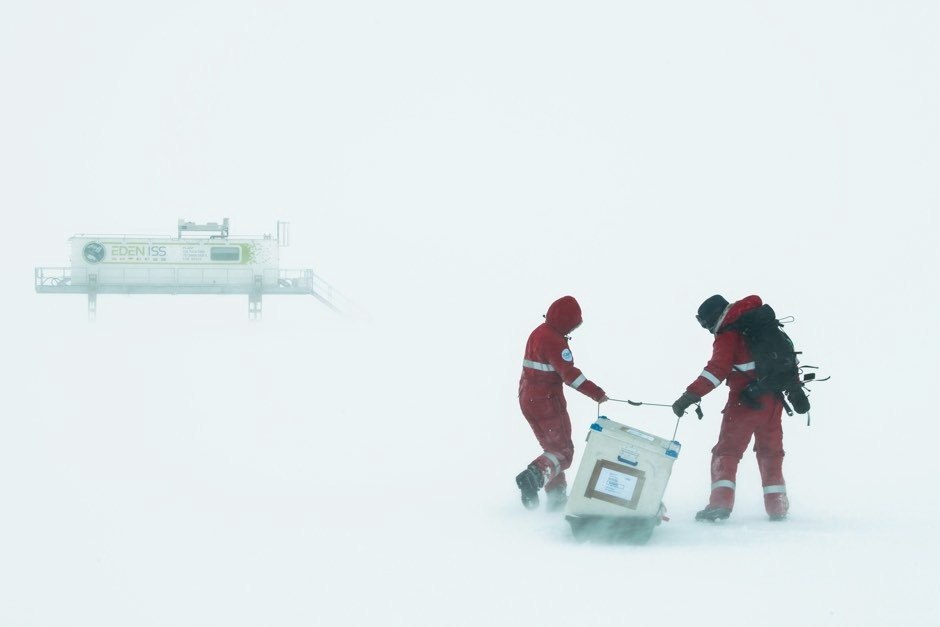 Dr Daniel Schubert and colleague drag a sledge to the greenhouse © Esther Horvath