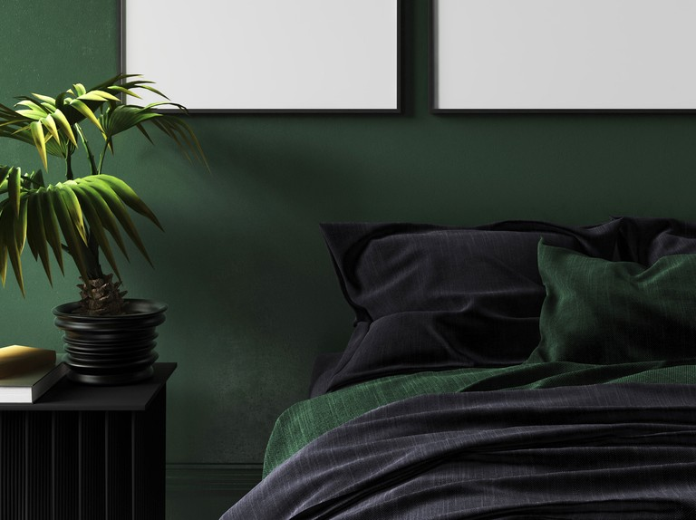 Is it true that you shouldn't keep plants in the bedroom?