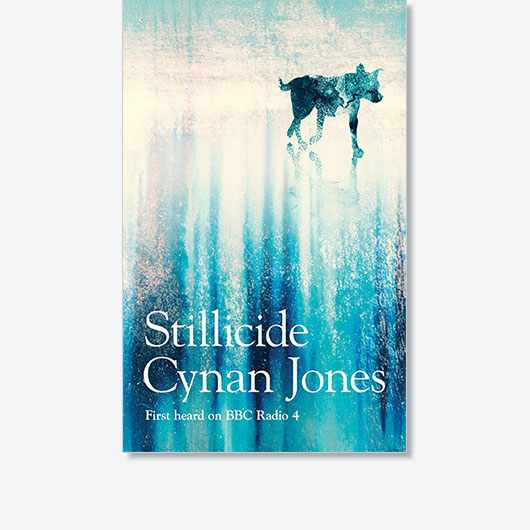 Stillicide by Cynan Jones is out now (£12, Granta).