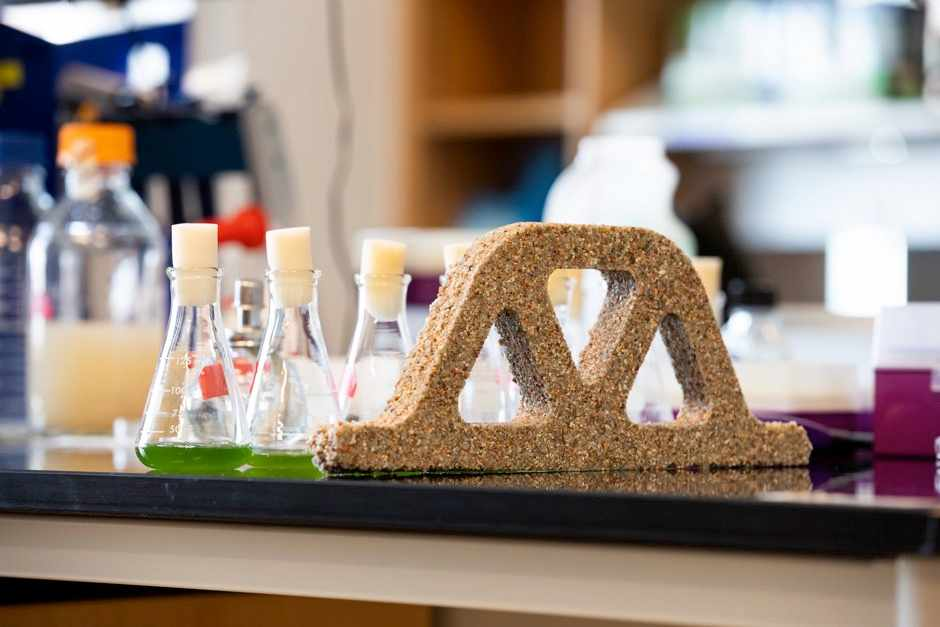 Bacteria growing and mineralising in the sand-hydrogel structure © Colorado University Boulder/PA