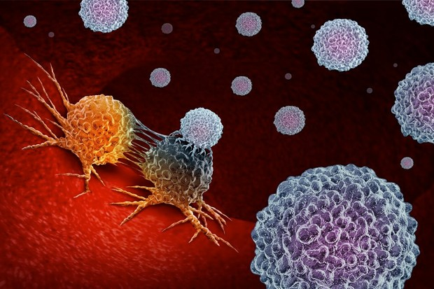 Aggressive cancers in 'evolutionary arms race' with the immune system © Getty Images