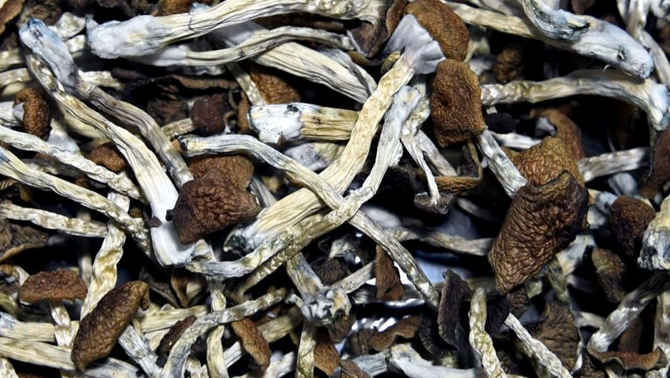 Psychedelic compound found in magic mushrooms may help with anxiety and depression in cancer patients