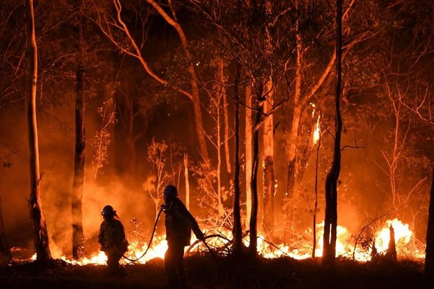 Australian wildfires: is there anything that can be done to stop the world burning? © Getty Images