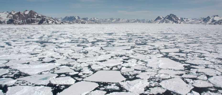 Clam shell study issues dire warning over Arctic sea ice melt © Getty Images