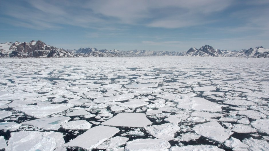 Clam shell study issues dire warning over Arctic sea ice melt