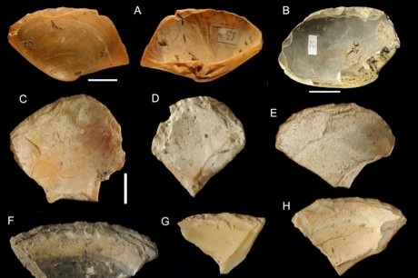 Neanderthals collected shells at the beach, just like us © Villa et al 2020/PA