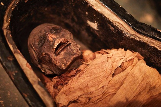 Sound of a 3000-year-old Egyptian mummy's voice recreated thanks to 3D printing © Leeds Museum and Galleries/PA