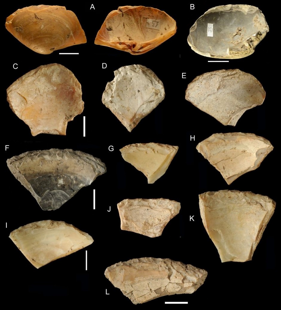 Seashells collected by Neanderthals © Villa et al 2020/PA