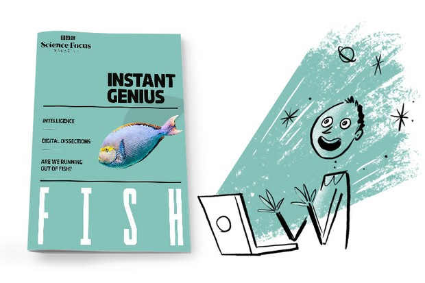 Lunchtime Genius: Fish