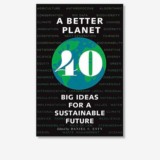 A Better Planet: 40 Big Ideas for a Sustainable Future, edited by Daniel C. Esty, is out now (£18.99, Yale Books)
