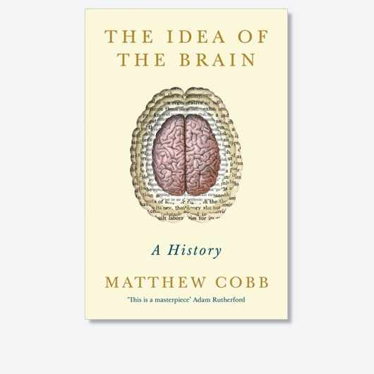 The Idea of the Brain by Matthew Cobb is available now (£30, Profile Books)