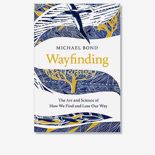 Wayfinding: The Art and Science of How We Find and Lose Our Way by Michael Bond is out now (£20, Picador)