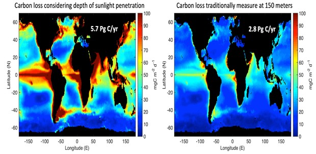 Carbon loss traditional measurement at 150 meters compared to carbon loss measurement considering depth of sunlight penetration © Ken Buesseler/Woods Hole Oceanographic Institution