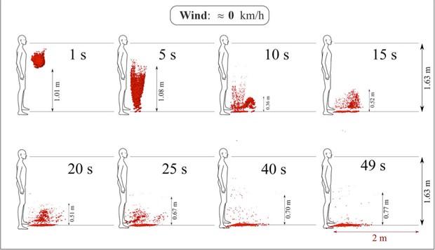 O tuse umană: particulele purtătoare de boală ale picăturilor de salivă care provin din tuse nu călătoresc mai mult de 2 m în spațiu cu o viteză aproximativă a vântului. Mediul a fost considerat a fi la temperatura ambientală, presiune și umiditate relativă de 20 oC, 1 atm și 50% cu temperatura la sol la 15 oC. Picăturile din figură au fost reduse pentru vizualizare. © Cu amabilitatea profesorului Dimitris Drikakis și a doctorului Talib Dbouk de la Universitatea din Nicosia, Cipru