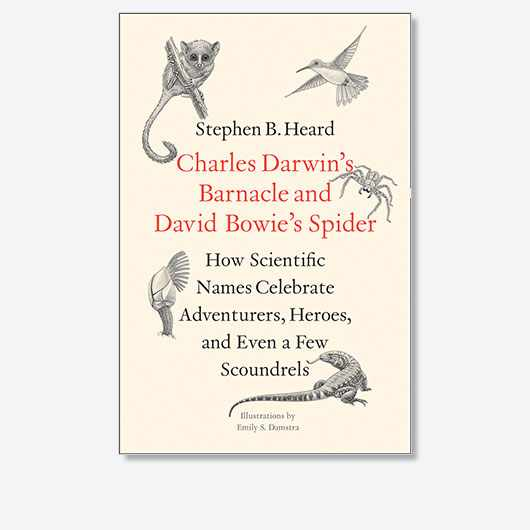 Charles Darwin's Barnacle and David Bowie's Spider: How Scientific Names Celebrate Adventurers, Heroes, and Even a Few Scoundrels by Stephen B. Heard is out now (£20, Yale University Press)