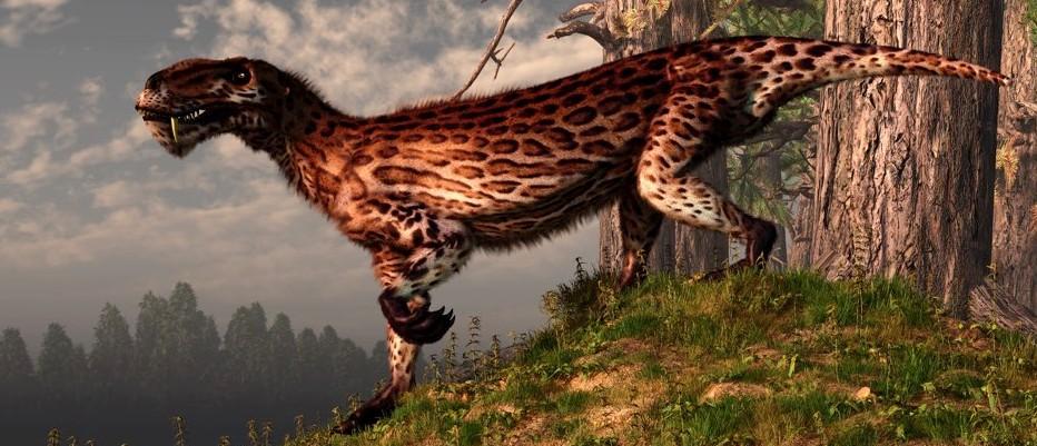 The secret world of mammal evolution
