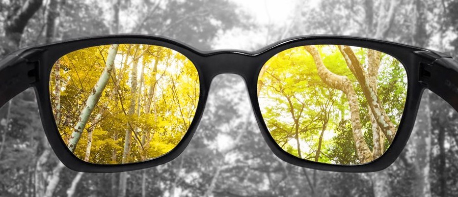 Glasses for the colour blind make visible a whole world of colour