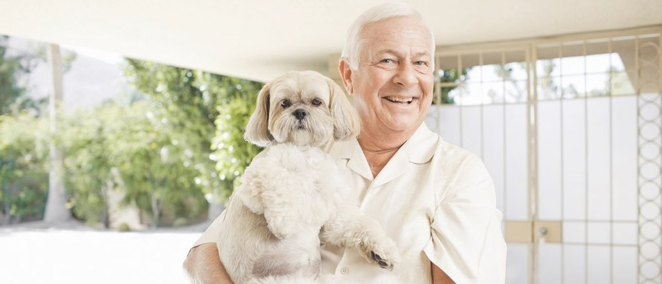 Can owning a dog extend your life?