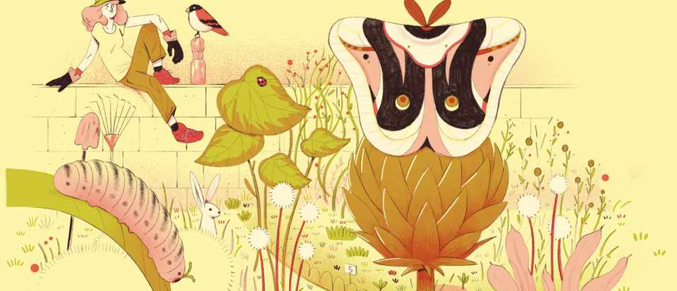 A scientist's guide to life: How to garden for wildlife