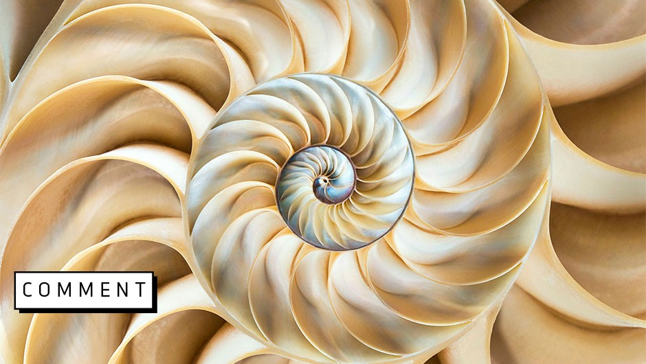 Experiencing mathematical beauty is within your reach