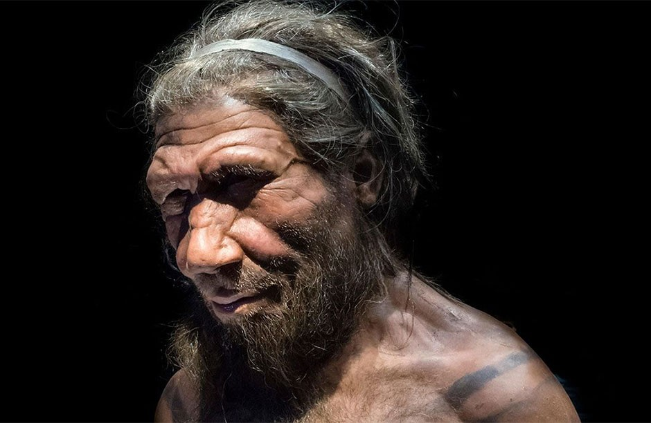 Neanderthal genes could increase the severity of COVID-19 symptoms