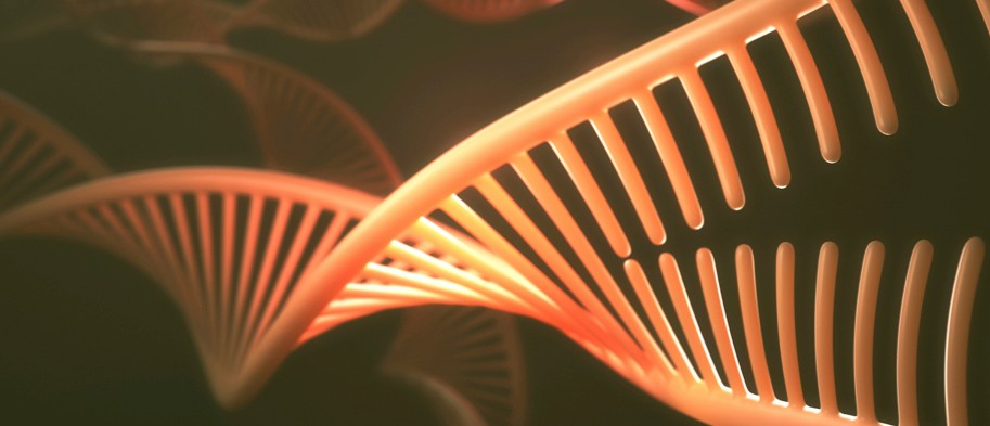 Everything you need to know about DNA (almost)