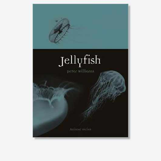 Jellyfish by Peter Williams is out now (£12.95, Reaktion Books)