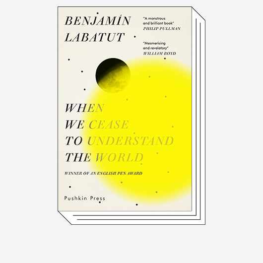 When We Cease to Understand the World © Pushkin Press