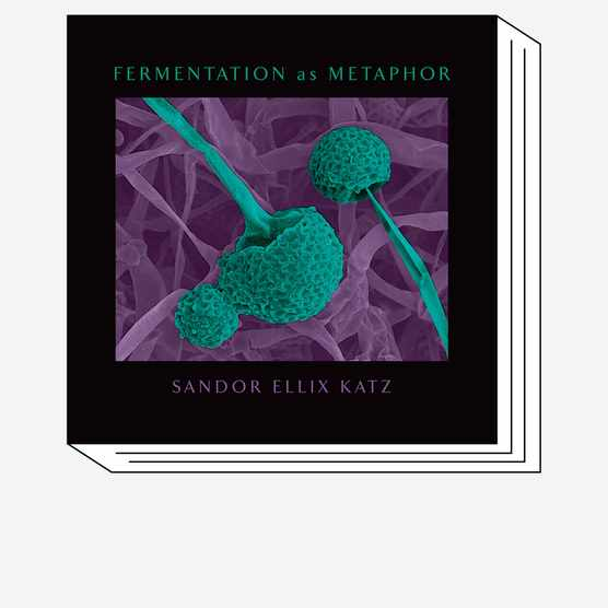 Fermentation as Metaphor book cover © Chelsea Green Publishing