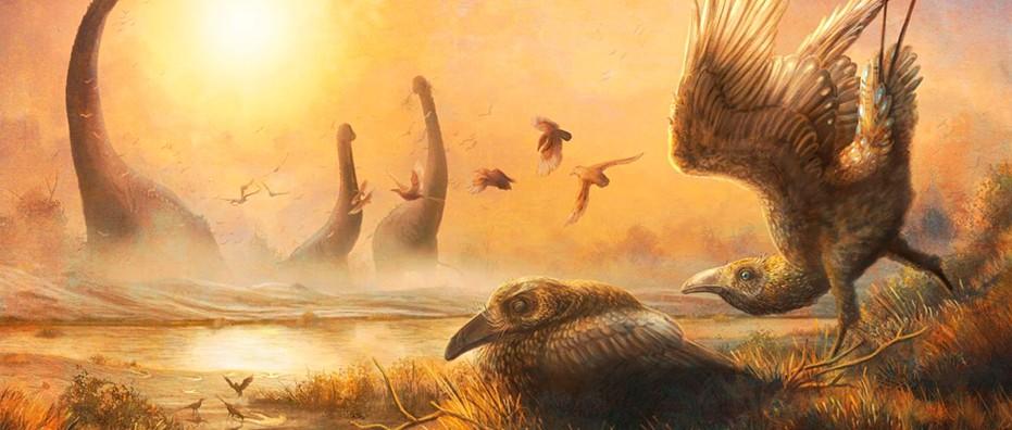 Ancient Madagascan bird fossil had a dinosaur bone structure but a modern face © Mark Witton
