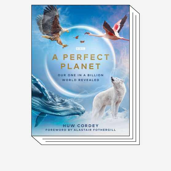 Cover of A Perfect Planet