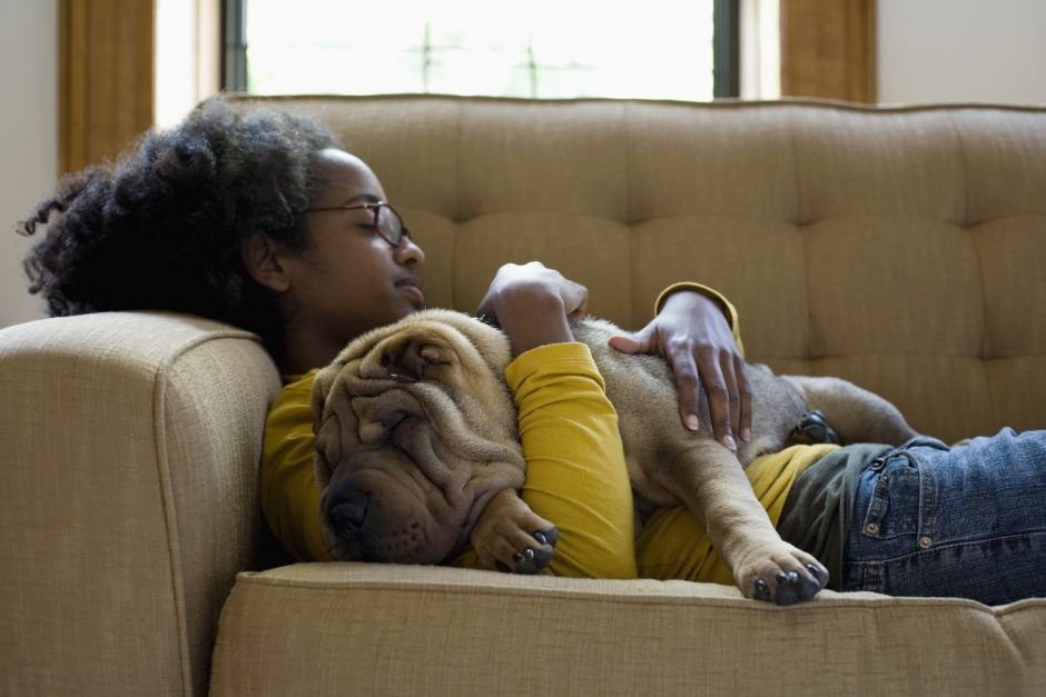 Regular afternoon naps linked to improved cognitive function