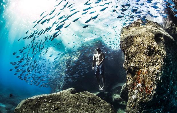 Andre Fajardo freediving early one summer morning in the Hawaiian Islands.