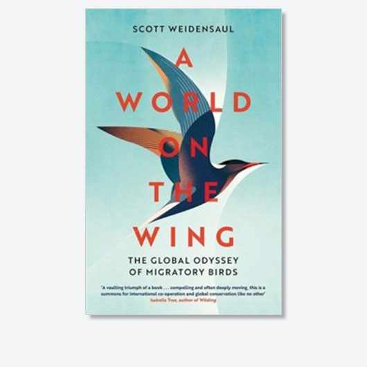 A World on the Wing by Scott Weidensaul is out on 18 March (£20, Pan Macmillan)