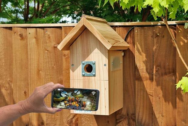 Garden Nature bird box (Best garden gadgets)