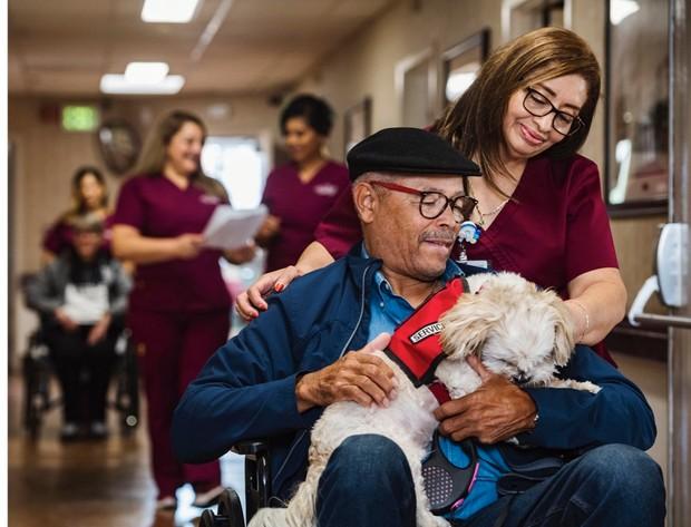 Les chiens d'assistance ne doivent pas être exclus des hôpitaux en raison de problèmes d'hygiène