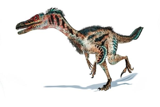 Tüylü velosiraptor