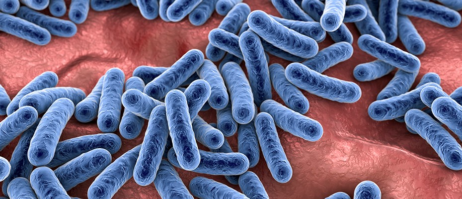 Do we get our gut bacteria microbiome before or after birth?