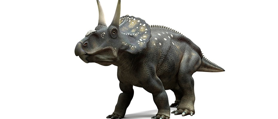 Did dinosaurs fart?