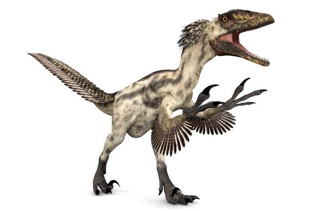 Dinonix