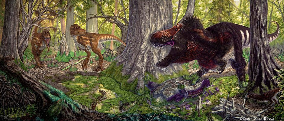 T. rex teens may have driven medium-sized dinosaur species extinct
