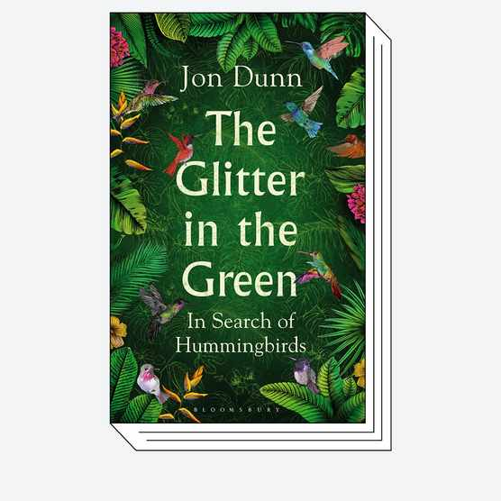 Cover of The Glitter in the Green © Bloomsbury