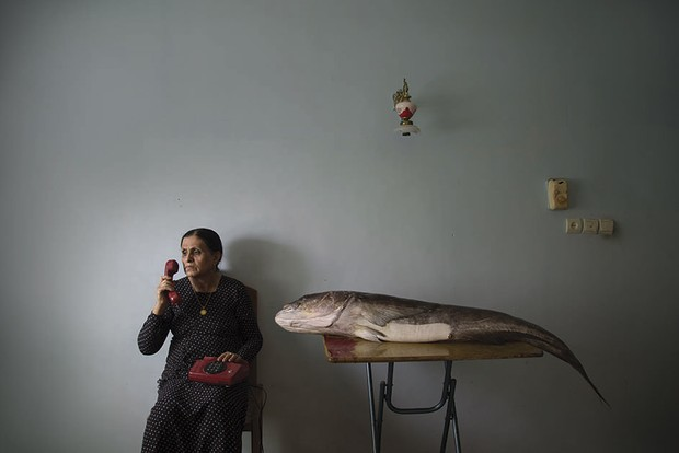 The image shows long-standing depression reimagined as a fish-like monster that is ever present © Morteza Niknahad/Wellcome Photography Prize 2021
