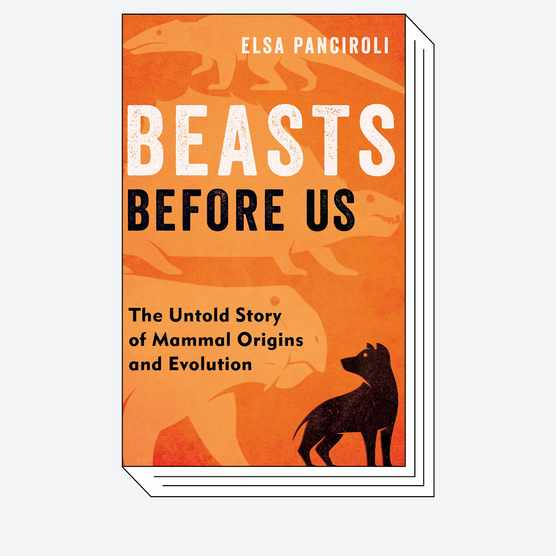 Beasts Before Us: The Untold Story of Mammal Origins and Evolution © Bloomsbury Sigma