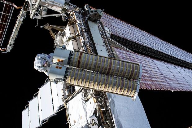 Les nouvelles matrices, emballées dans un emballage cylindrique | © NASA/Johnson
