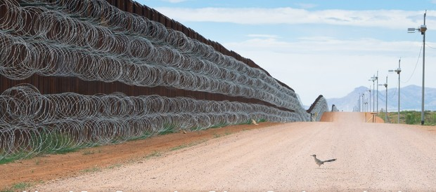 Road Runner on the US-Mexico border