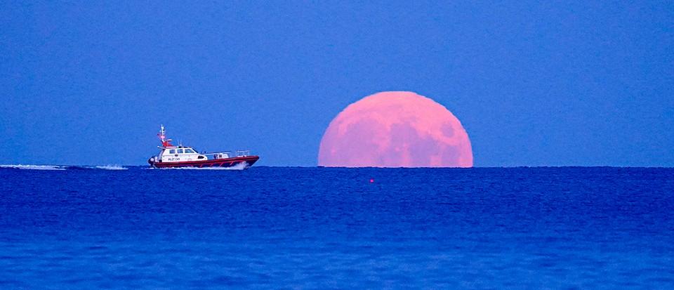 Maximum beauty: The full Harvest Moon 2021 in pictures - BBC Science Focus Magazine